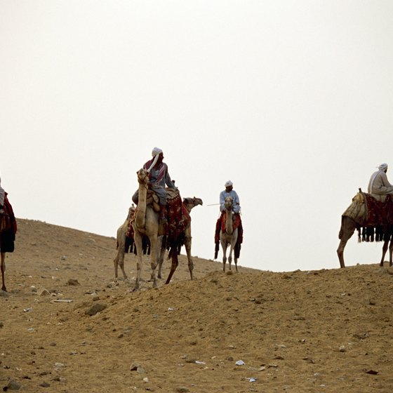 An eco-tour in Egypt may include a camel safari.