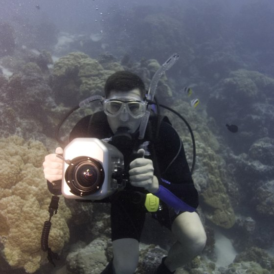 An expensive camera may not be insured even with dive insurance.