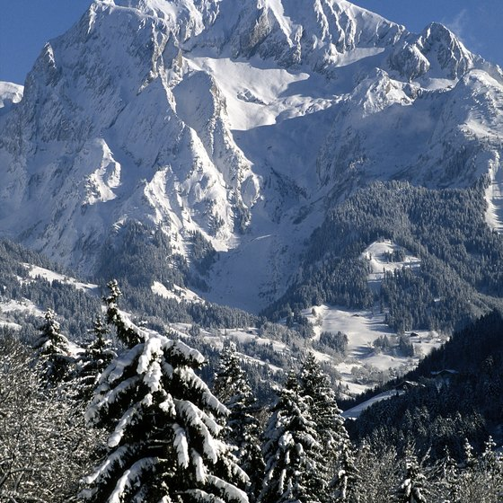 France's landforms include mountain peaks rising above the tree line.
