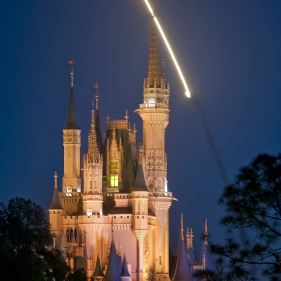The Magic Kingdom in Disney World is a hit with kids of all ages.