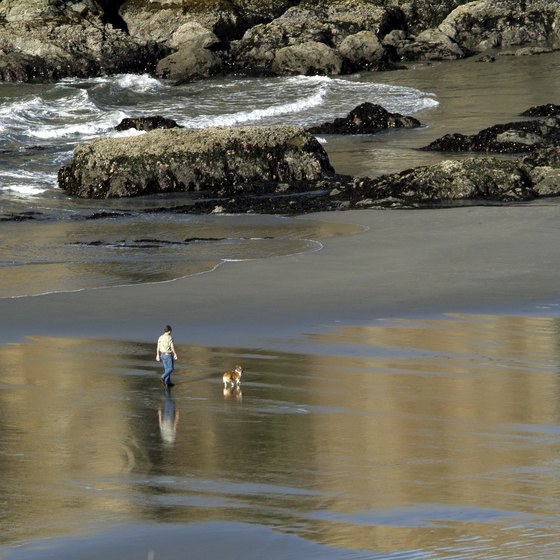 Oregon beaches are the perfect destination for families and romantic couples.