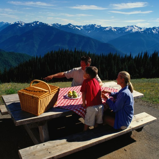 Hurricane Ridge is a short dirive from Port Angeles.