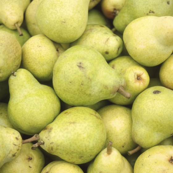 Bartlett Pears are a prize commodity in Courtland.