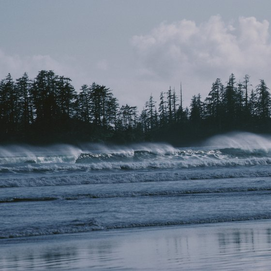 Long Beach, near Tofino, draws surfers from all over.