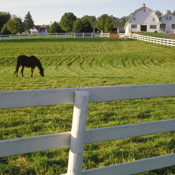 The horse farms of Kentucky are sometimes in the background as you explore the Bluegrass State.