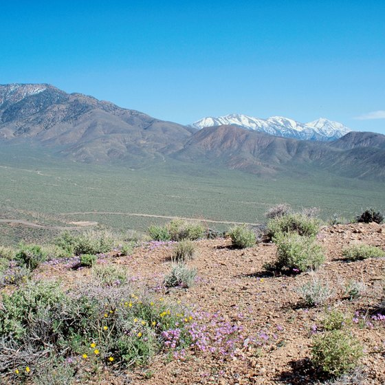 View of the snow-capped Sierra Mountains from Death Valley.