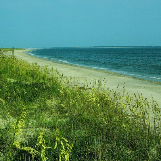 North Carolina has miles of undeveloped beach, like this one at Cape Fear.