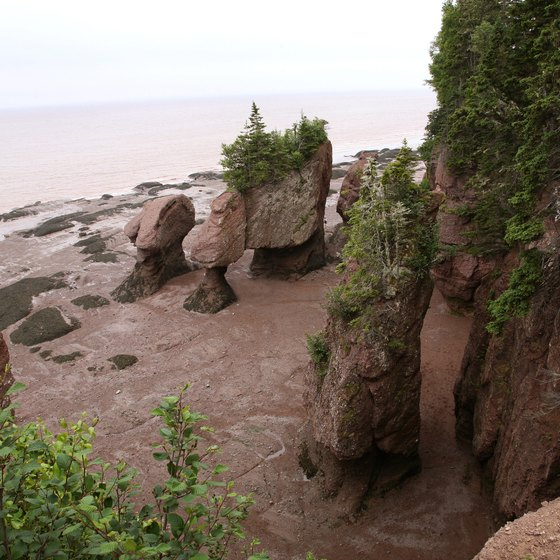 "The Hopewell rock formations bear names like ""ET"" and ""Mother-in-Law."""