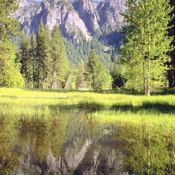 Yosemite National Park Vacations: Yosemite Tours For Kids