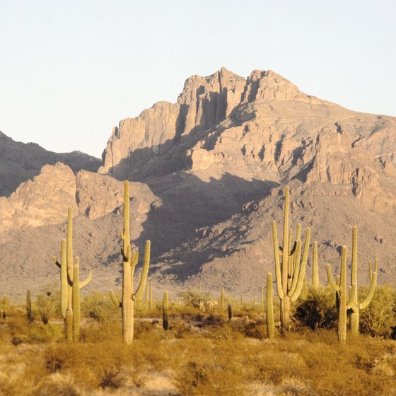 Pinal County is in Arizona's Sonoran Desert.