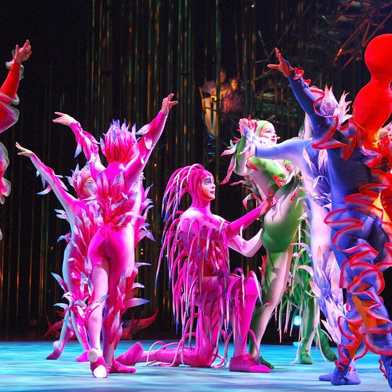 Cirque du Soleil features performance acts from around the world.
