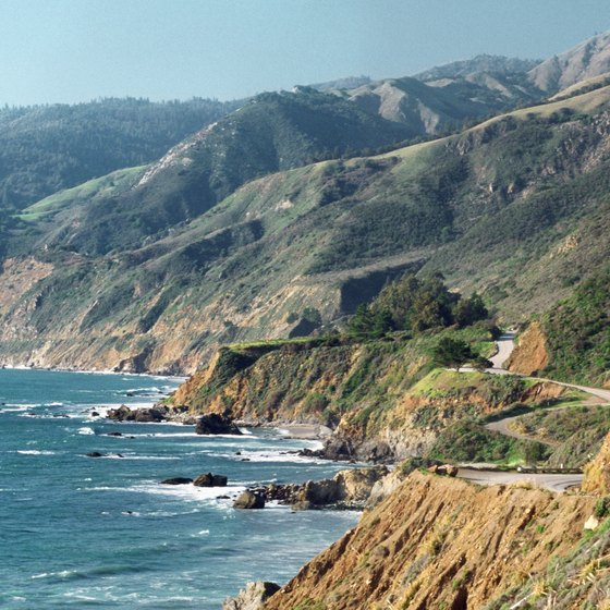 View dramatic cliffs and marine life along California's Pacific Coast Highway.