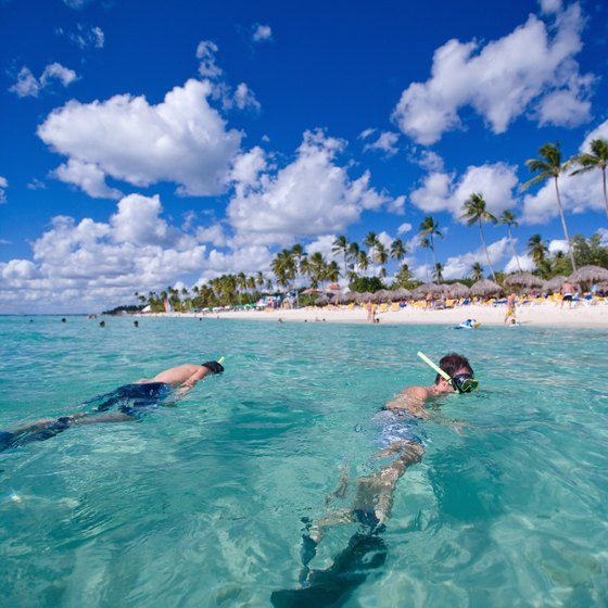 Whenever snorkeling is on an excursion itinerary, it's optional.