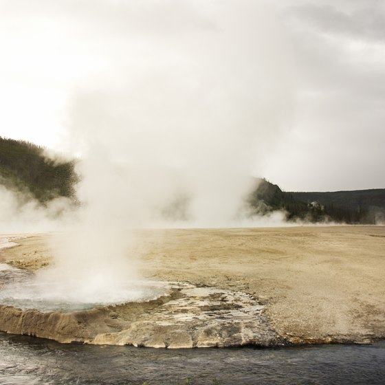 The geysers are among the many attractions within Yellowstone National Park.