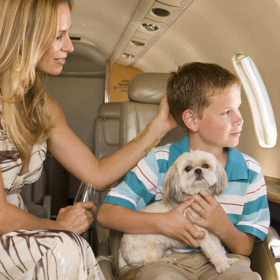 Emotional support animals help patients with debilitating mental illnesses fly safely.