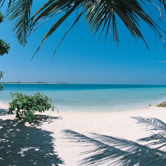 Tropical Beaches: Tropical Beaches In The Maldives