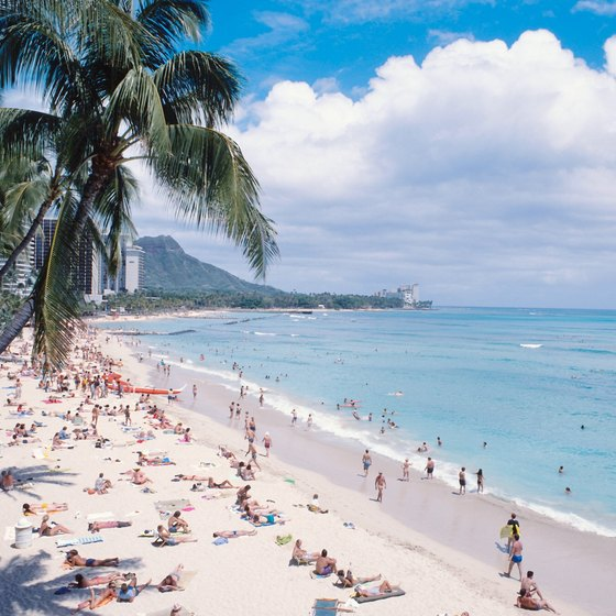 Spend the days on sandy beaches in Waikiki.