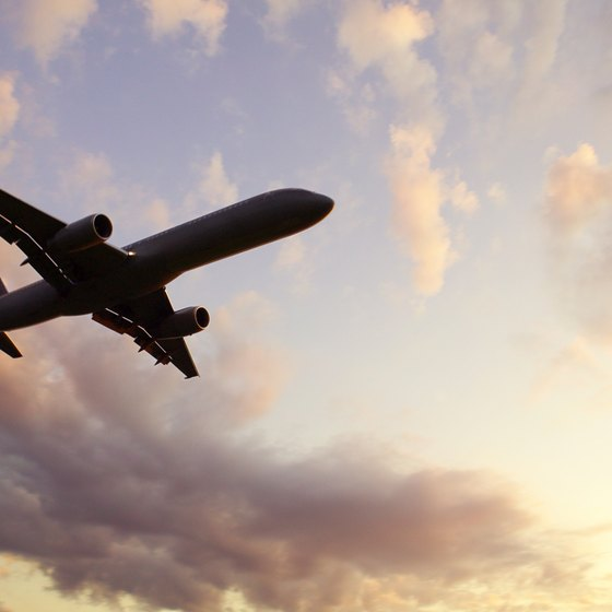An airline's website can help you track your flight's progress.