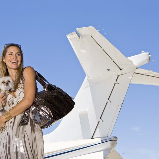 Airline reservation systems store data regarding special passenger needs, luggage and pet travel.