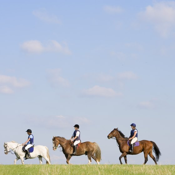 Saddle up and spend the day horseback riding in Michigan.