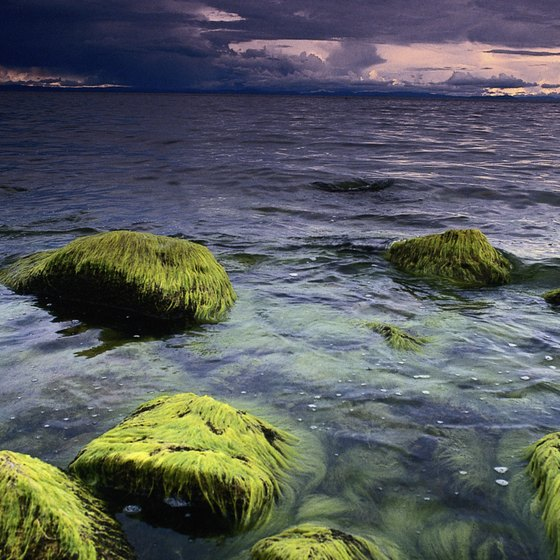 Lake Titicaca is a vast and beautiful lake that lies between Peru and Bolivia.