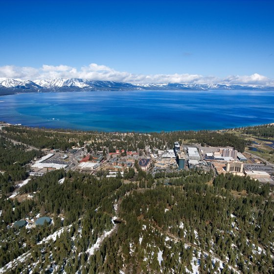 Lake Tahoe's north and south communities have many dog-friendly hotels.