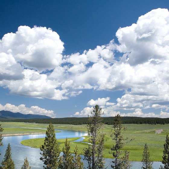 Yellowstone Park is busiest during the summer months.