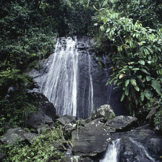 One of El Yunque's many waterfalls.