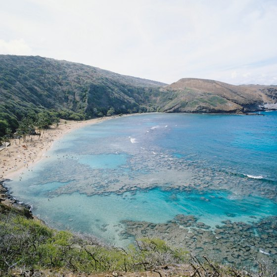 Hanauma Bay on Oahu offers stellar snorkeling.