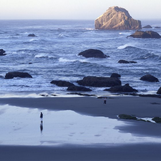 The Oregon coast is a popular vacation destination.