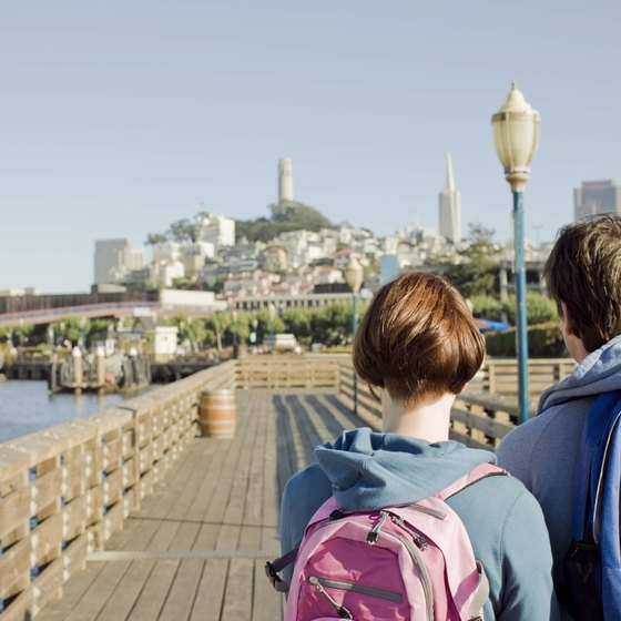 Pier 39's most popular residents have a well-honed sense of audience.
