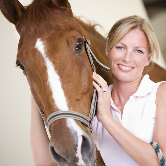 Like the rest of Ontario, the southern region is known for equestrian recreation opportunities.