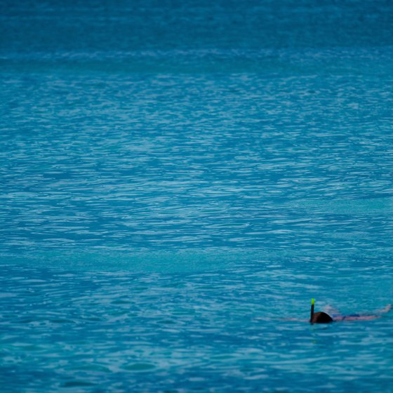 Dominican Republic waters offer some of the best snorkeling in the Caribbean Sea.
