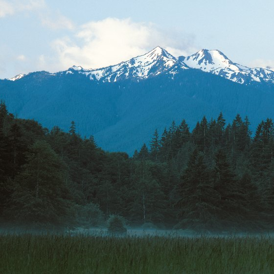 The Olympic Peninsula showcases the landscape mosaic hikers experience in the maritime Northwest.
