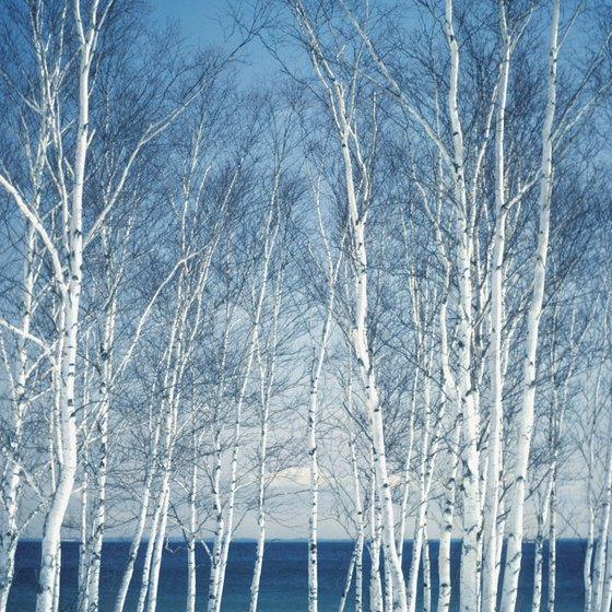 Duluth is on the northern banks of Lake Superior, which is stunning, even in winter.