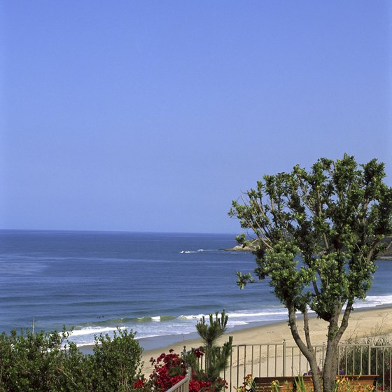 Cliff-perching gardens frame the blue sky, water and sandy beaches of the Orange Coast.