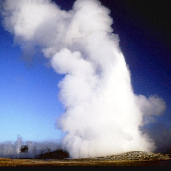 Park rangers predict eruption times for a small number of Yellowstone's geysers, including Old Faithful.
