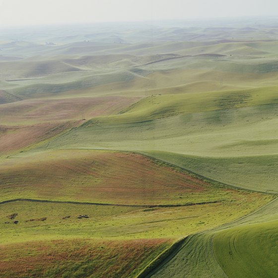The farmlands of Palouse, Washington, are located in Whitman County.