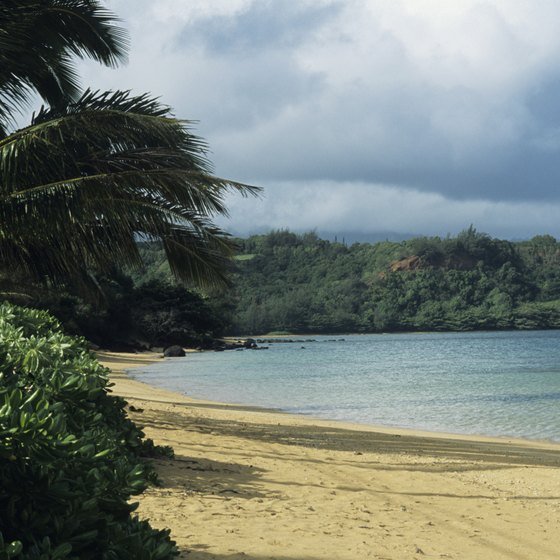 Kauai is the northern-most of the Hawaiian Islands.