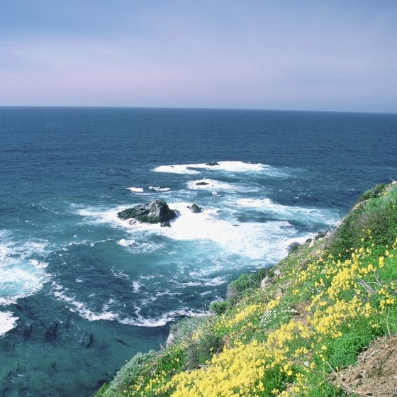Route 1 in San Simeon offers motorists picture-perfect ocean views.