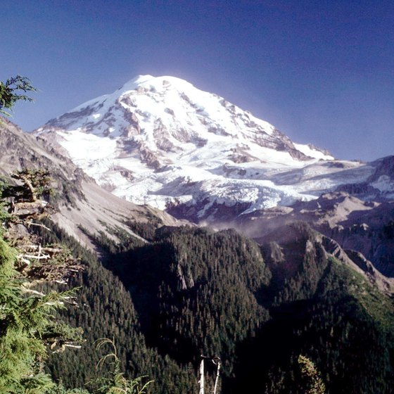 The Mount Rainier area offers a variety of lodging options.