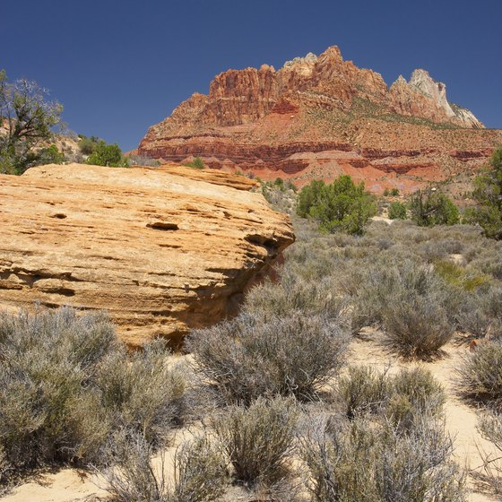 Zion National Park is located in southwestern Utah.
