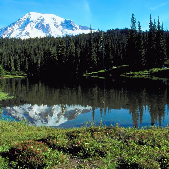 Mt. Rainier National Park plays host to some of Washington's historic landmarks.