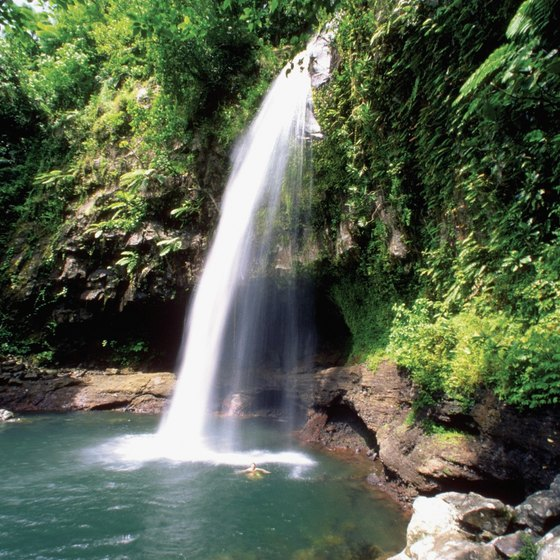 Waterfall lagoons, caves and mud pools are hidden in Fiji's lush interior.