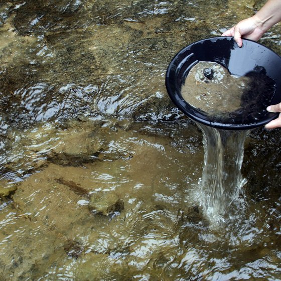 Pan for gold in Monongahela National Forest.