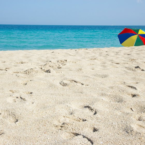 Florida beaches offer sun and warmth, even in the dead of winter.