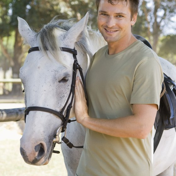 Your horse can accompany you on vacation.