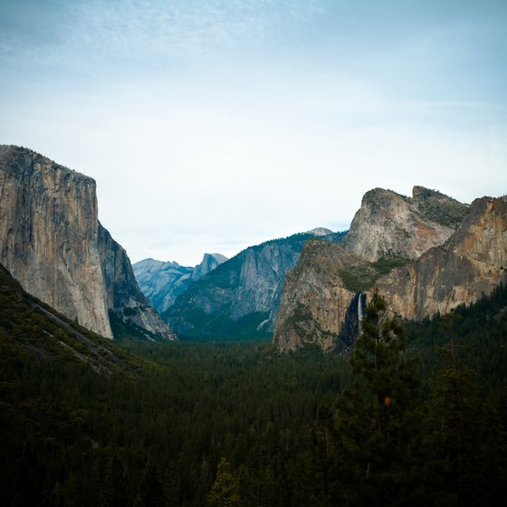 Stark cliff faces surround valleys in Yosemite National Park.