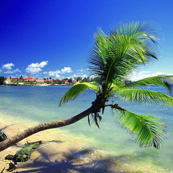 A cruise is an excellent means of making your way around the Caribbean's many idyllic beaches.
