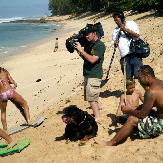 Sunny Garcia, pro surfer, at Oahu's Haleiwa beach with his dog and family.